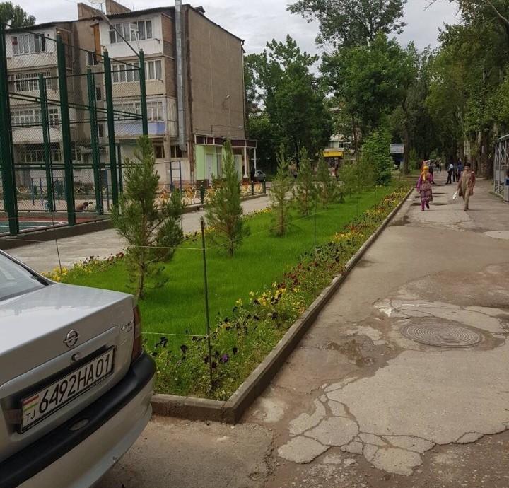 Сохтмони майдончаи варзиши дар н.Синои ш. Душанбе